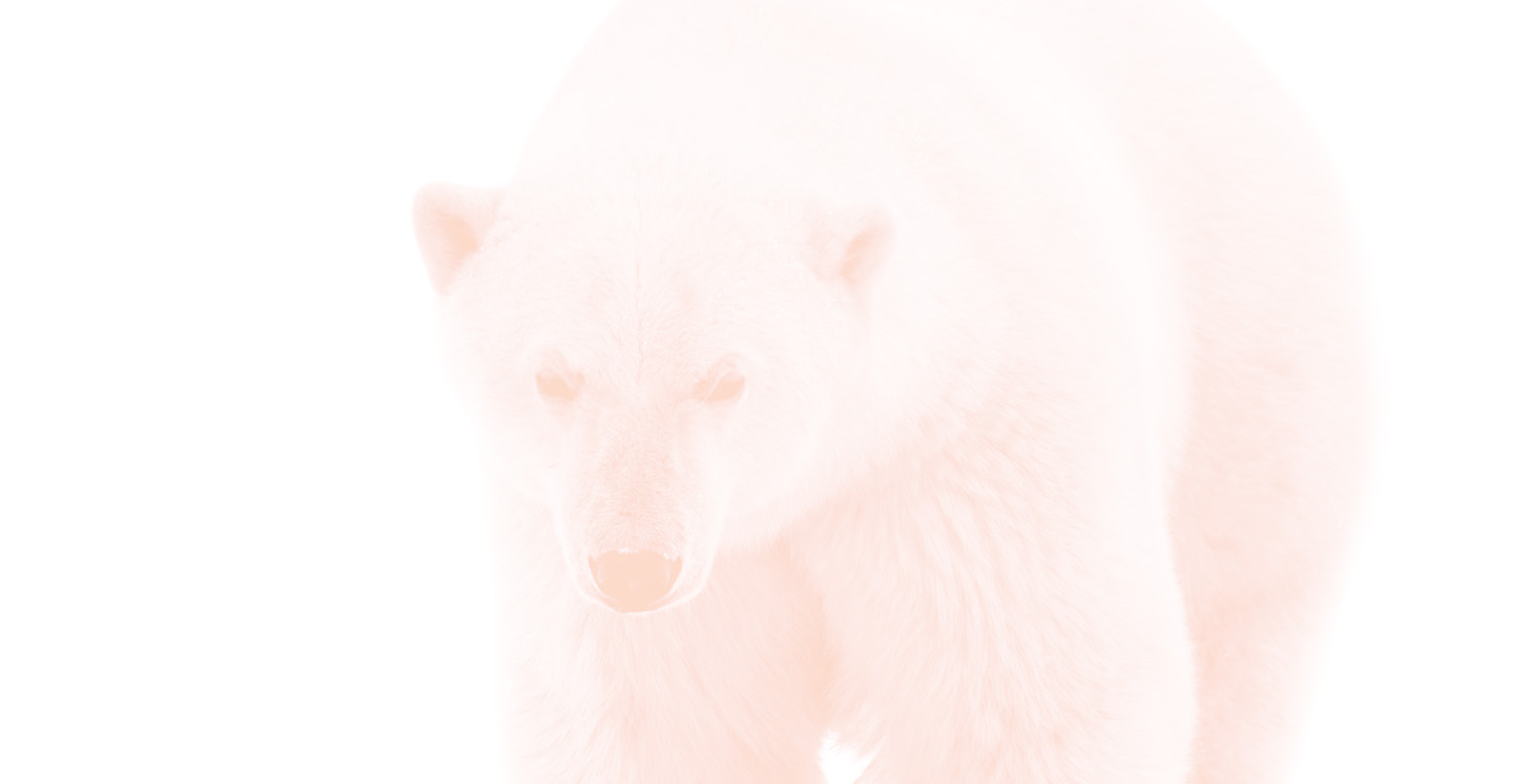 Polar Bear Law